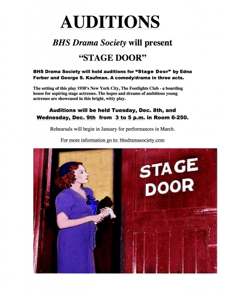STAGE DOOR AUDITIONS SHEET